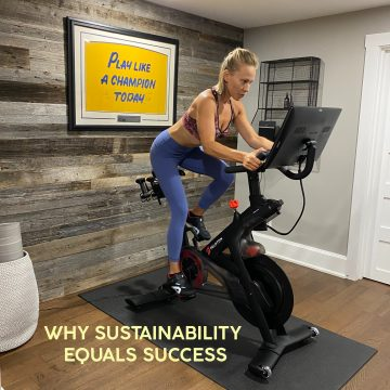 sustainability equals success